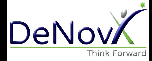 DeNovX Logo
